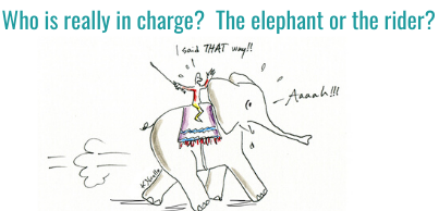 The elephant or the rider – who is really in charge?